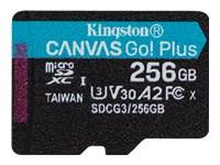 Bild von KINGSTON 256GB microSDXC Canvas Go Plus 170R A2 U3 V30 Single Pack w/o ADP