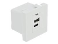 Bild von DELOCK Easy 45 USB Ladeportmodul 1xUSB Typ-A + 1xUSB Type-C