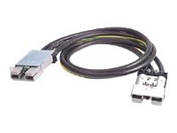 Bild von APC Symmetra RM 4ft Extender Cable for 220-240V RM Battery Cabinet