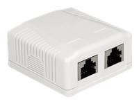 Bild von DELOCK Netzwerk Anschlussdose 2 Port Cat.6A LSA