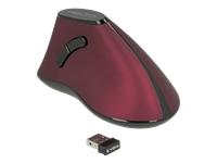 Bild von DELOCK Ergonomische vertikal optische 5-Tasten Maus 2,4 GHz wireless