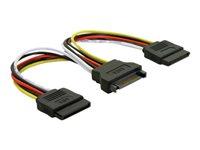 DELOCK Adapt Power SATA HDD2x15PinSt15cm - Kovera Distribution