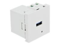 Bild von DELOCK Easy 45 USB Ladeportmodul 1xUSB Typ-A