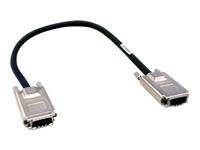 Bild von D-LINK DEM-CB50 CX4 Stack-Kabel 0,5m für DGS-3120 Serie Stecker geschraubt