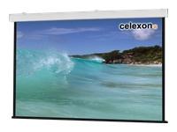 Bild von CELEXON Deckeneinbau Leinwand Motor Expert 250x140