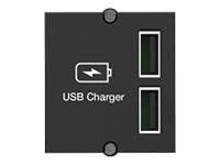Bild von BACHMANN Custom Modul USB Doppel-Charger 19.07.1398