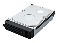 Bild von BUFFALO HDD 1TB for TeraStation TS5000 Series