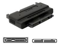 Bild von DELOCK Adapter SATA 22pin auf Micro SATA 16pin
