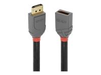 Bild von LINDY 0.5m DisplayPort Verlängerungskabel Anthra Line
