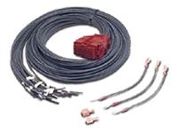 Bild von APC Battery Management Cable 150cm