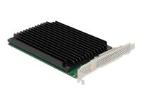 Bild von DELOCK PCI Express x16 Karte zu 4xintern NVMe M.2 Key M mit Kühlkörper - Bifurcation