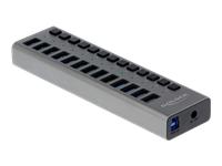 Bild von DELOCK Externer USB 3.0 Hub mit 13 Ports + Schalter